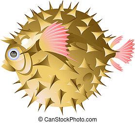 fish-urchin
