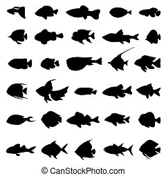 Fish vector silhouettes black on white