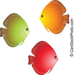 Fish vector. To see similar, please VISIT MY PORTFOLIO