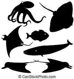 fish, vektor, sæt, silhuetter, 4
