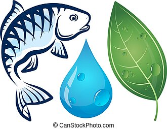 Fish, water drop and green leaf
