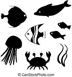 fish, wektor, komplet, sylwetka, 3