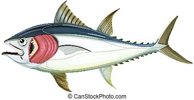 Fish with gills on white background