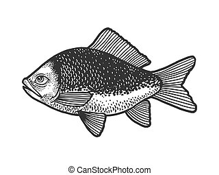 Fish with human eye sketch engraving vector illustration. T-shirt apparel print design. Scratch board imitation. Black and white hand drawn image.