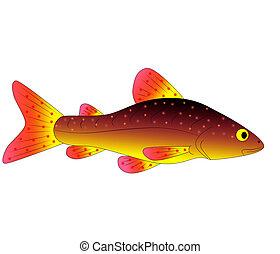 fish, zabawka, barwny