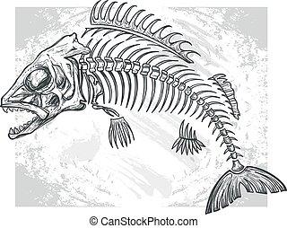 fishbone, zeichnung