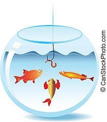 fishbowl, peche
