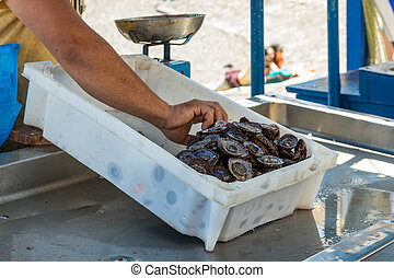 Fisherman after a successful fishing, behind the counter sells his catch of fish and shellfish. Gentle warm sunny day. Old port, historical part of Puerto Cruz. Tenerife, Spain