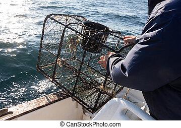 Fisherman bringing back lobster pot in a boat