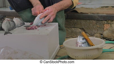 Fisherman cleaning fish in the street for following sale