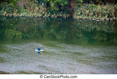 Fisherman in a lake