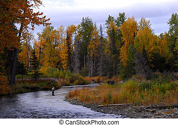 Fisherman in Alaska in Autumn - Man fly fishing in Autumn in...