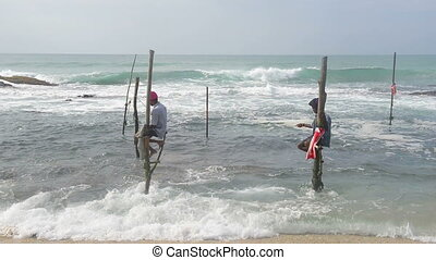 Fishermen in Sri Lanka - Local fishermen on stick in indian...
