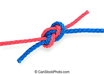 Fisher's knot 04 tight - Fisher's figure-eight knot with red...