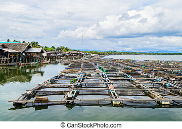 Fishery on the sea at fishing village