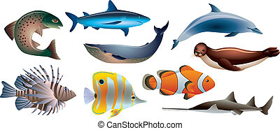 fishes and marine life photo realistic vector set