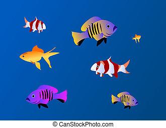 Fishes aquarium background
