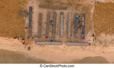Fishes arranged on a beach - An aerial shot of fishes...