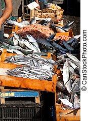 Fishes, Fish market, Catania - Fishes, Fish market, catania...