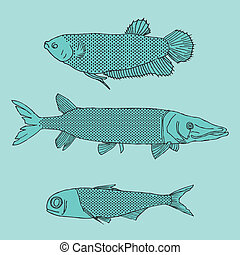 Fishes - original drawing of various shapes of fish on blue...