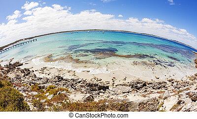fisheye, 看法, ......的, vivonne, 海灣, 在, 南方澳大利亞