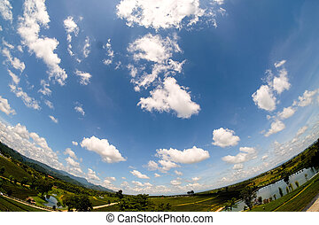 Fisheye lens picture of nature