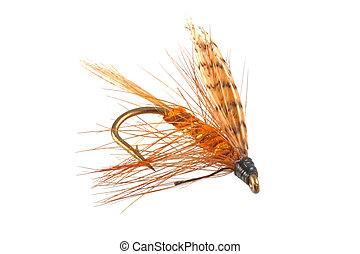 fishing., πετάω , μύγες , πότε , μεταχειρισμένος