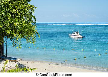 Fishing boat anchored near a coast