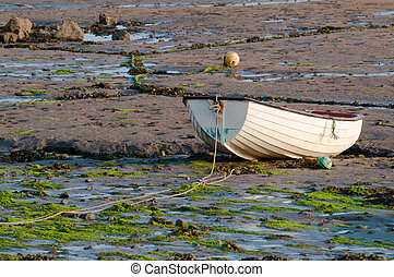 Fishing boat at sunrise at low tide in the estuary