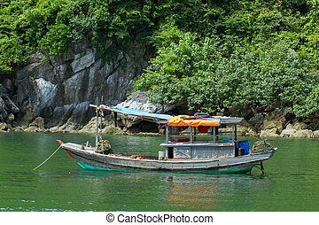 Fishing boat in the Ha Long Bay