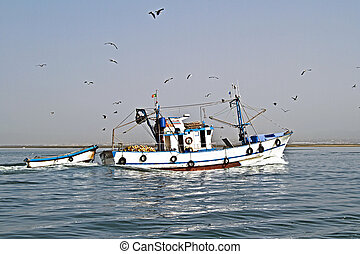 Fishing boat returning to home harbor with lots of seagulls