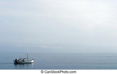 Fishing boat sailing