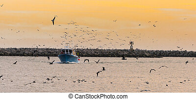 Fishing Boat With Birds at Sunset