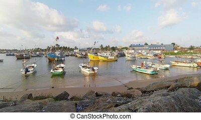 Fishing boats at anchors