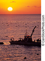 Fishing boats of the dawn,