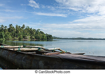 fishing boats on the lake in the jungles of Sri Lanka.