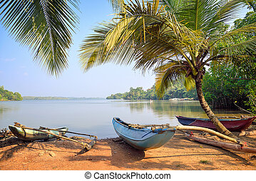 fishing boats on the lake