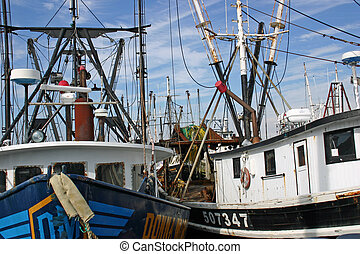 Fishing Boats - Several fishing boats in the marina in ...