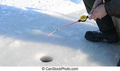 Fishing for live bait - Winter fishing. Fishing bait for...
