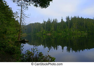This photo of Lake Marie in Oregon, with the reflecting trees, depicts a remote and peaceful fishing spot.