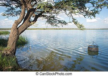 Fishing Pen in Water by Tree