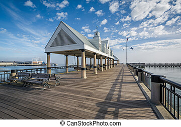 Fishing pier at the Waterfront Park, in Charleston, South Carolina.