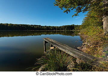 Fishing pond on a sunny day in summer