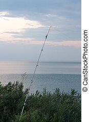 fishing rod on the shore