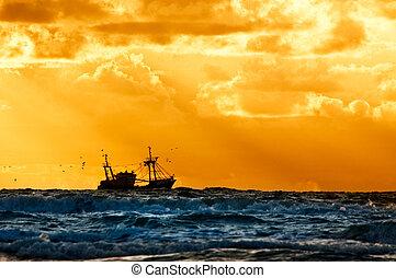 fiske, skepp, på havet