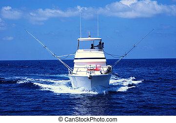 fiske, sport, båd