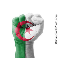 Fist of Algeria flag painted, multi purpose concept - isolated on white background