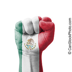 Fist of Mexico flag painted, multi purpose concept -...