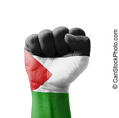 Fist of Palestine flag painted, multi purpose concept -...