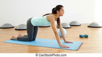 Fit brunette doing pilates exercise